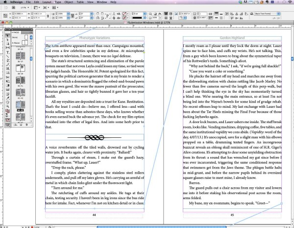 InDesign interface: master pages, glyph, headers, text frames